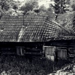 daniel_hajnuk_foto_12
